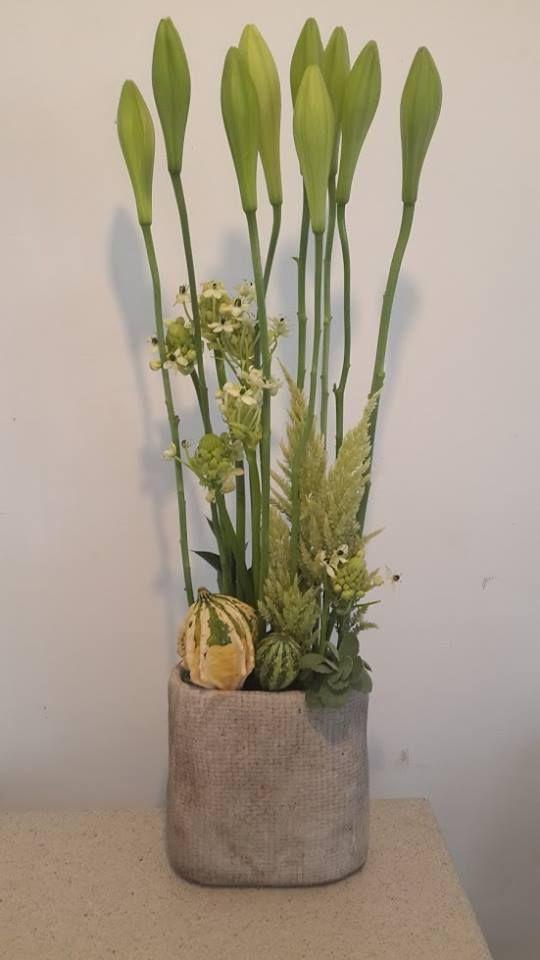 פרחים ארסוף
