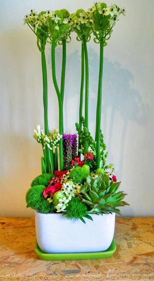 פרחים צור נתן