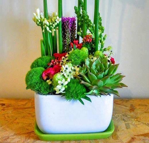 פרחים כפר שמריהו