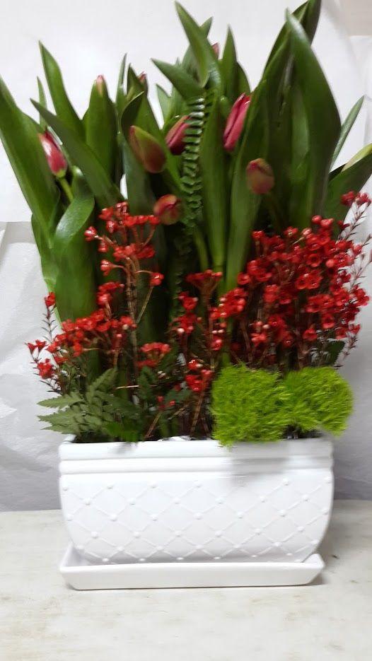 משלוחי פרחים גליל ים