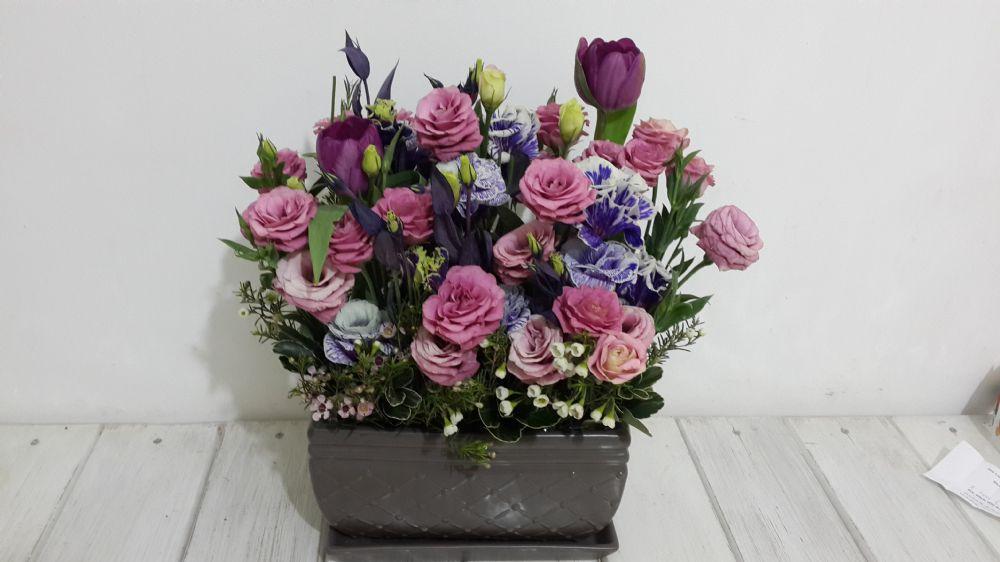 פרחים קדימה