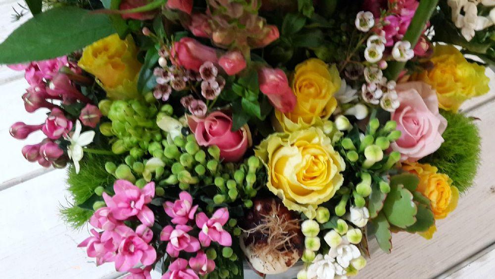 פרחים קיבוץ עינת