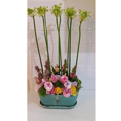 סידור פרחים הדר