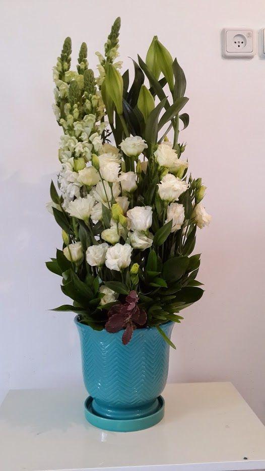 פרחים גבעת שמואל והסביבה