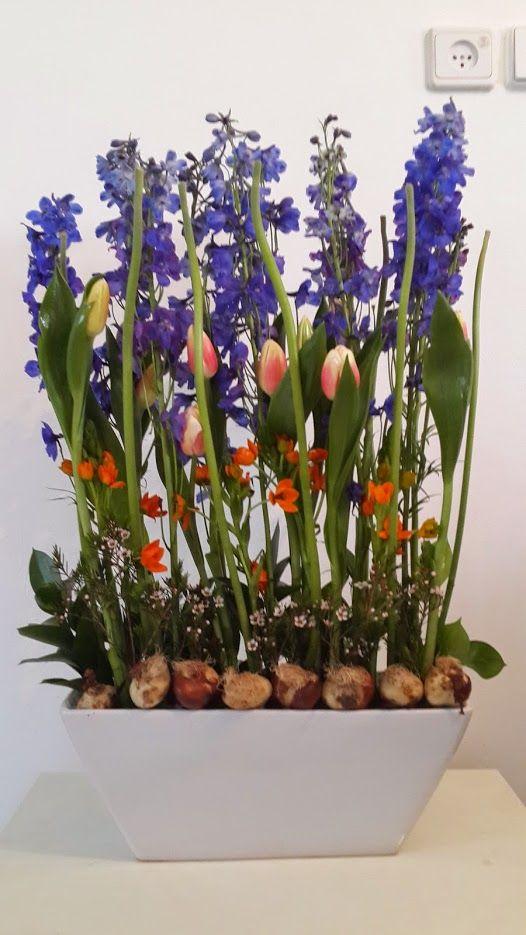 משלוחי פרחים נווה אביבים - תל אביב