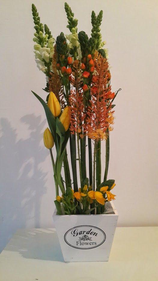 פרחים צור יגאל