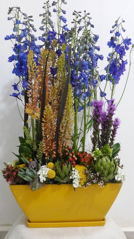 פרחים בית ברל