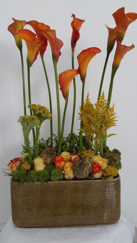 פרחים חגור