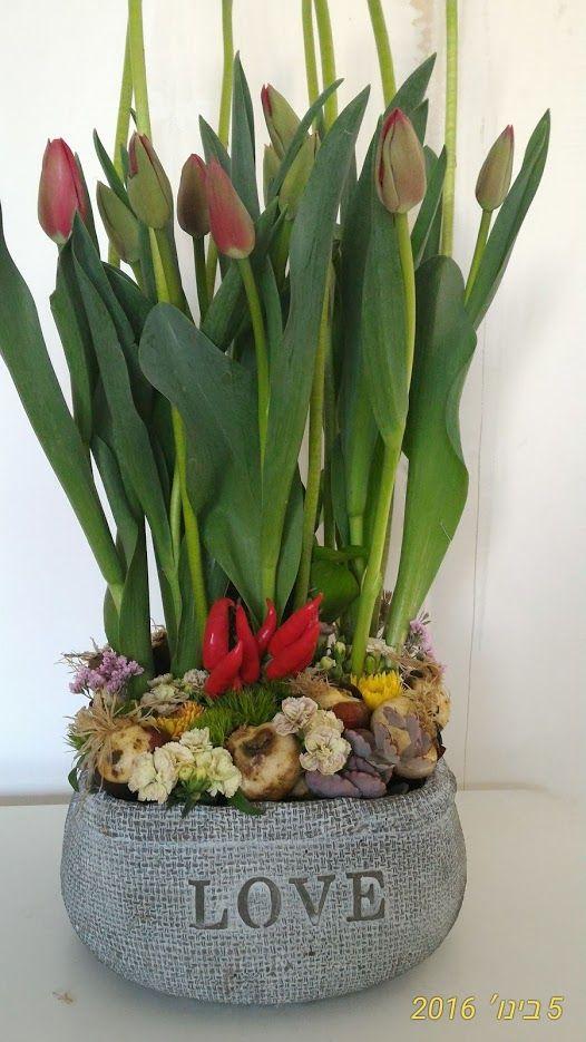 משלוחי פרחים תל ברוך