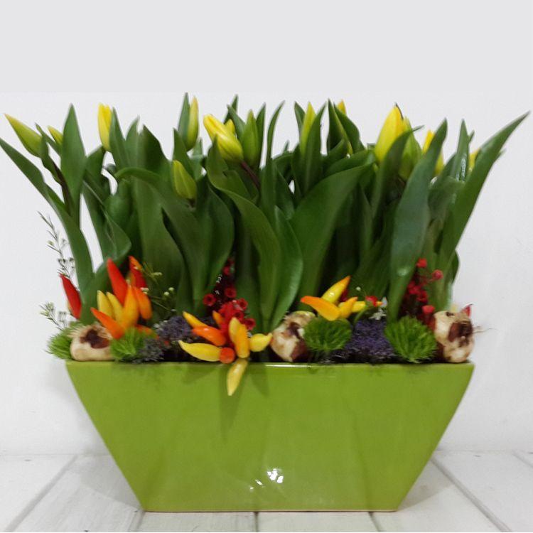 פרחים נווה ירק