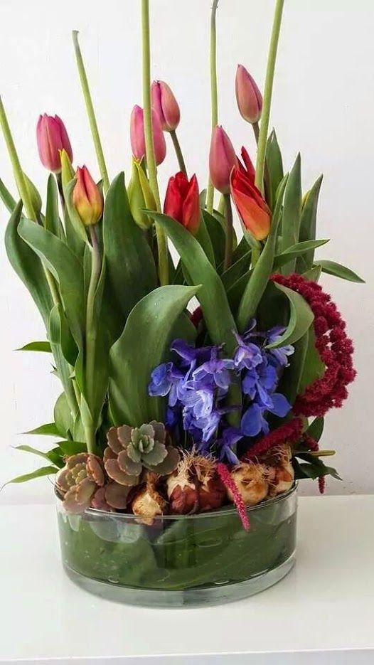 פרחים שיכון דן