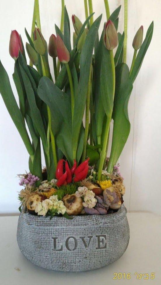 פרחים קרית עתידים