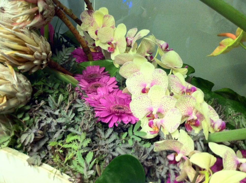 משלוחי פרחים- שדרוג המתנה האולטימטיבי