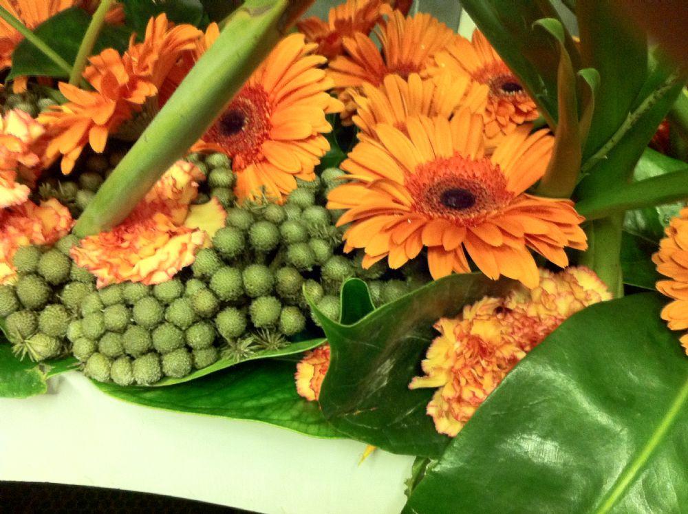 זר פרחים לטו' באב שנכנס ישר ללב