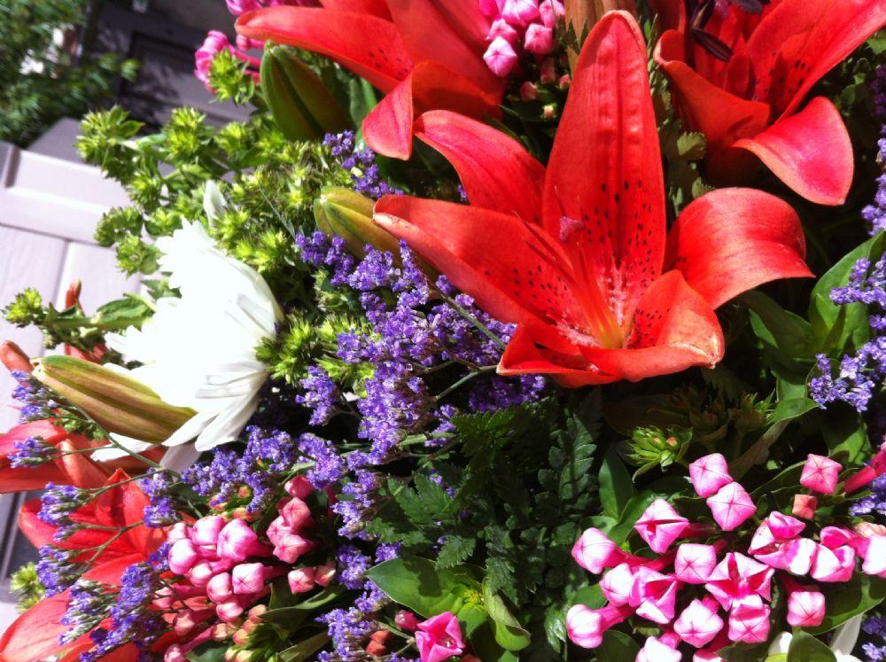 כיצד פרחים מעשירים את האווירה בבית